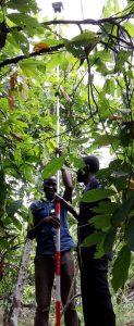Lo staff sul campo di Landmapp sta raggiungendo il segnale sopra la tettoia, su questa foto ancora con un palo pesante